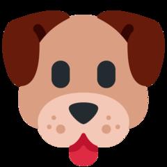 Masashi profile picture