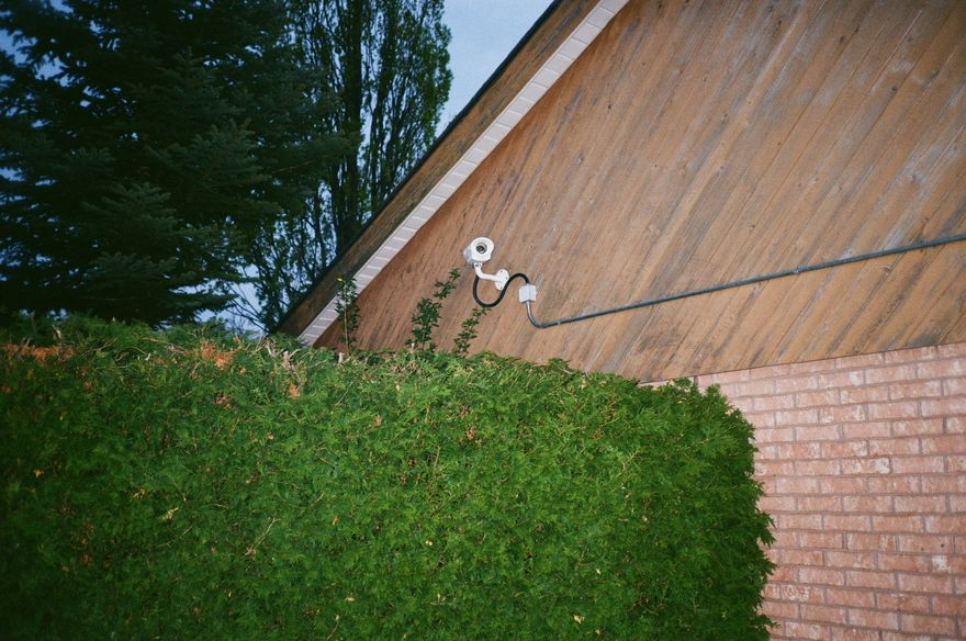 surveillance camera mounted to side of house, tall tree in the background, garden bush in the front