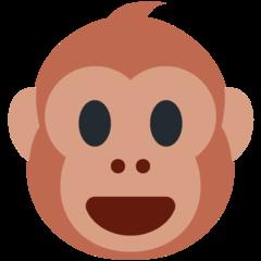 Franz profile picture